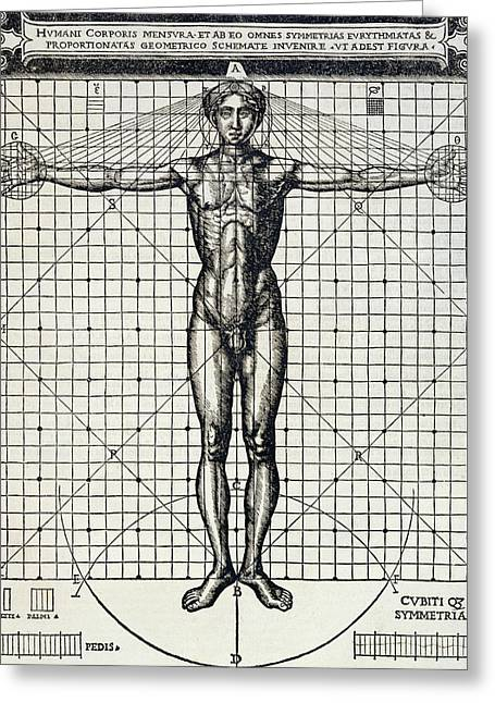 Cesare Greeting Cards - Ideal proportions based on the human body Greeting Card by Cesare di Lorenzo Cesariano