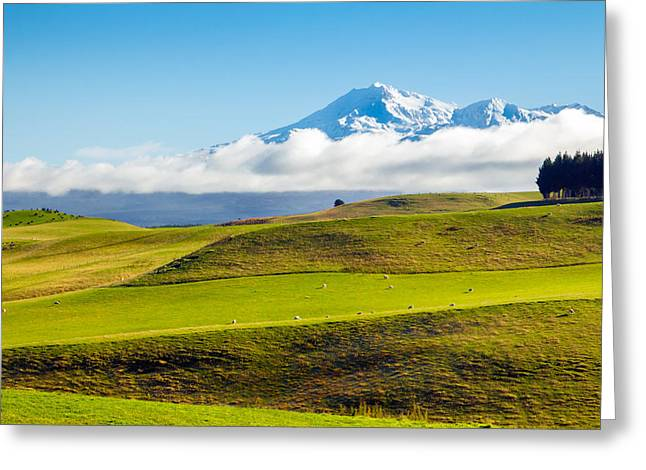 Snow Scene Landscape Greeting Cards - Idyll Greeting Card by Nicholas Blackwell