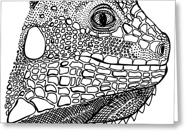 Wild Life Drawings Greeting Cards - Iguana Greeting Card by Karl Addison