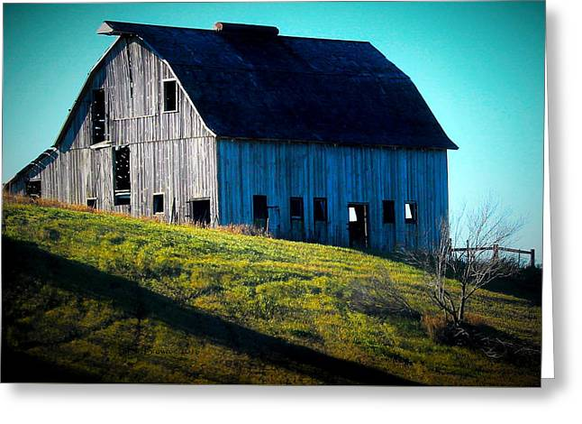 Illinois Heritage Greeting Card by Laura Birr Brown