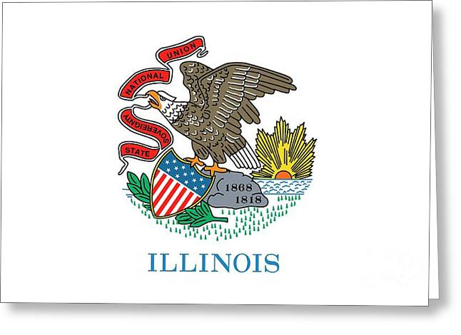 Illinois State Flag Greeting Card by American School