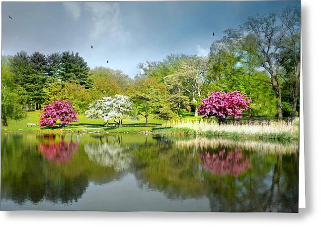 Pond In Park Photographs Greeting Cards - Im Home Now Greeting Card by Diana Angstadt