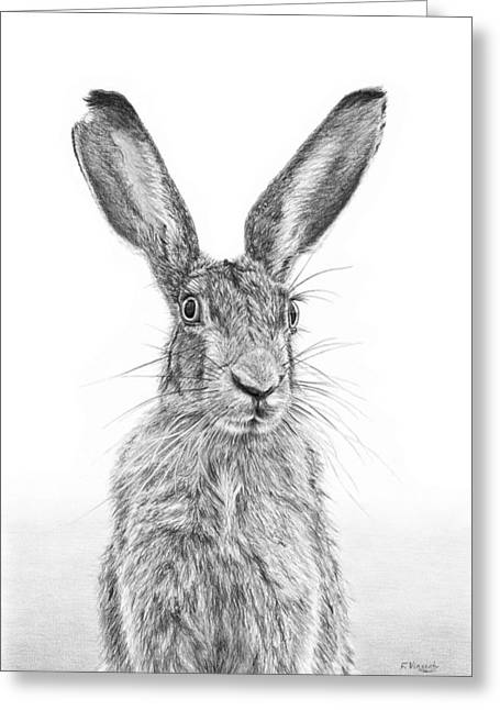 March Hare Greeting Cards - Im Over Hare Greeting Card by Frances Vincent