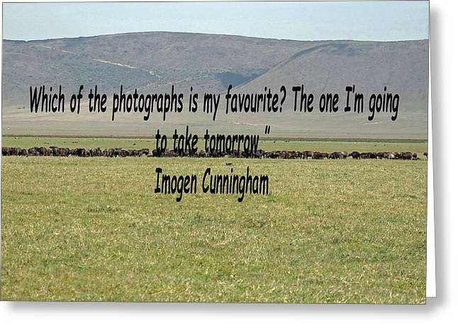 Imogen Cunningham Quote Greeting Card by Tony Murtagh