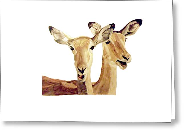 Zimbabwe Paintings Greeting Cards - Impalas Greeting Card by Angeles M Pomata