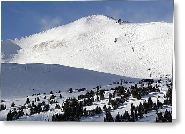 Tree Lines Greeting Cards - Imperial Bowl on Peak 8 at Breckenridge Colorado Greeting Card by Brendan Reals
