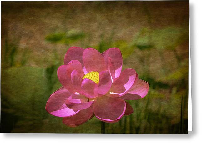 Impressionist Greeting Cards - Impressionist Pink Lotus Flower Greeting Card by Deanna Duke