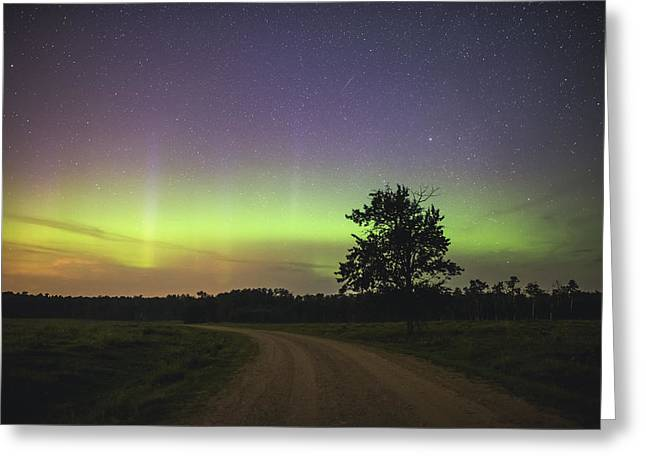 Edmonton Photographer Greeting Cards - Impulse Greeting Card by Mike Isaak