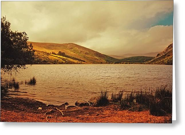 Tour Ireland Greeting Cards - In a Magic Place in a Mystic Mood. Lough Dan. Wicklow. Ireland Greeting Card by Jenny Rainbow