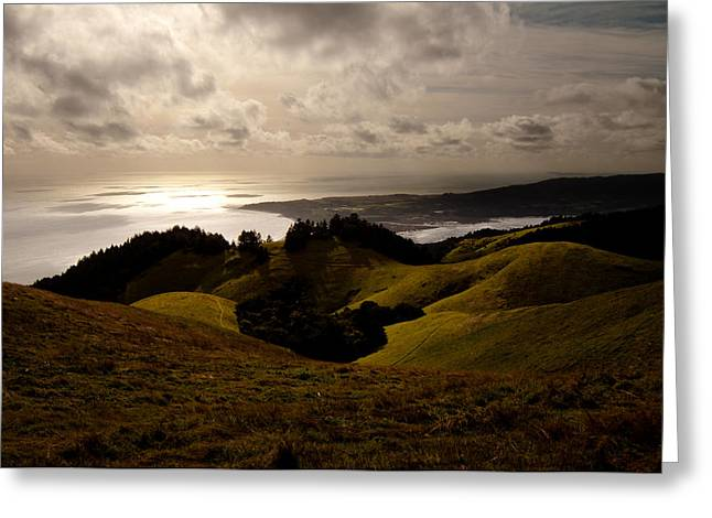 Recently Sold -  - Marin County Greeting Cards - In Flight - Stinson Beach CA Greeting Card by Michael Keel