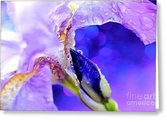 Whimsical. Greeting Cards - In Living Color Greeting Card by Krissy Katsimbras