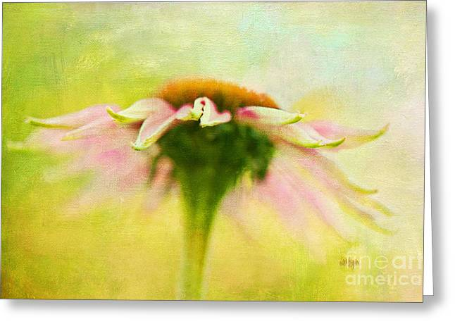In Perfect Harmony Greeting Card by Lois Bryan