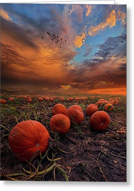 In Search Of The Great Pumpkin Greeting Card by Phil Koch