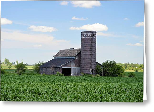 Hay Bales Greeting Cards - In The Corn Greeting Card by Bonfire Photography