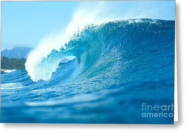 Vince Greeting Cards - In The Curl Greeting Card by Vince Cavataio - Printscapes
