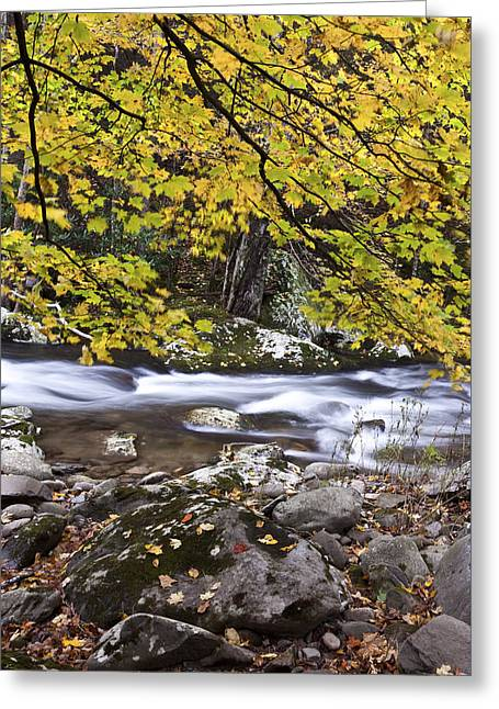 In The Distant Fall Greeting Card by Jon Glaser