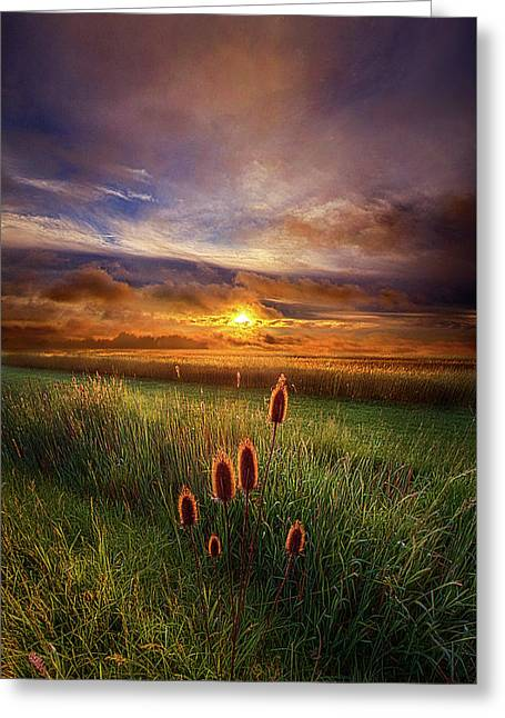 In The Eye Of The Beholder Greeting Card by Phil Koch