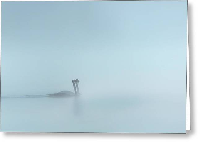 In The Fog Greeting Card by Bill Wakeley