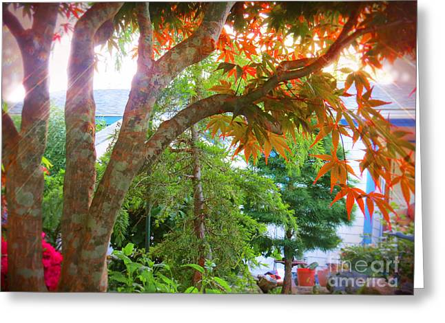 Weeping Greeting Cards - In The Garden Greeting Card by Shelly Weingart