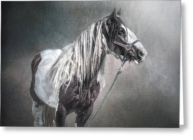 Gypsy Greeting Cards - In The Misty Moonlight Greeting Card by Brian Tarr