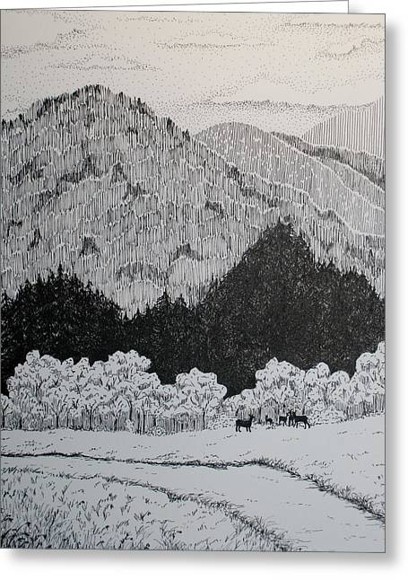 Pen And Ink Drawing Greeting Cards - In the Open Greeting Card by Sandra Norris