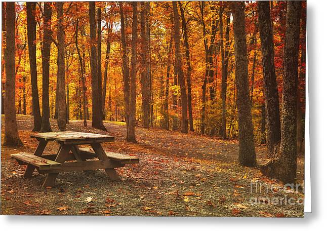 Autumn Photographs Greeting Cards - In The Park Greeting Card by Kathy Jennings