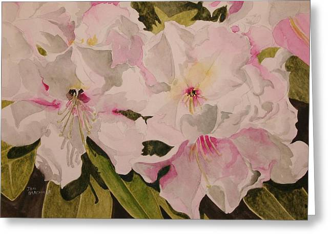 Jean Blackmer Greeting Cards - In The Pink Greeting Card by Jean Blackmer