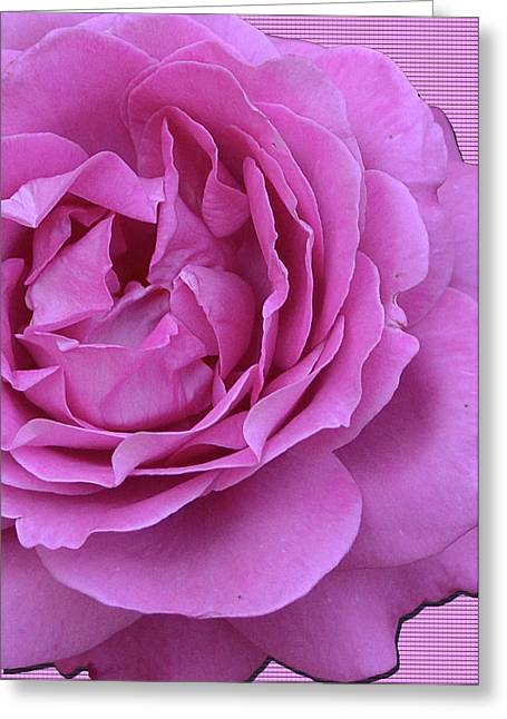 In The Pink Greeting Card by Larry Bishop
