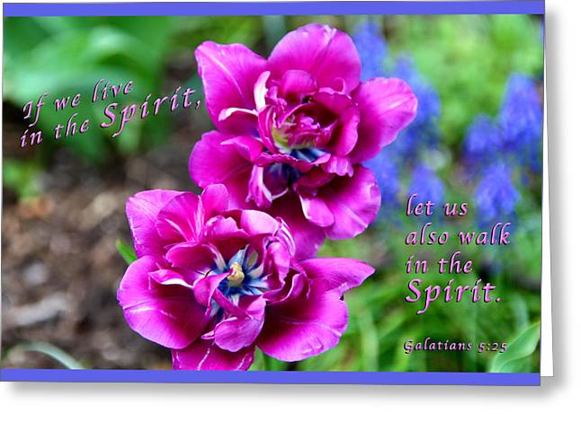 Fineartamerica Greeting Cards - In The Spirit Greeting Card by Terry Wallace