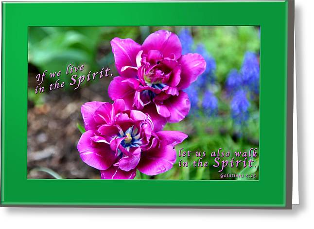 In The Spirit1 Greeting Card by Terry Wallace