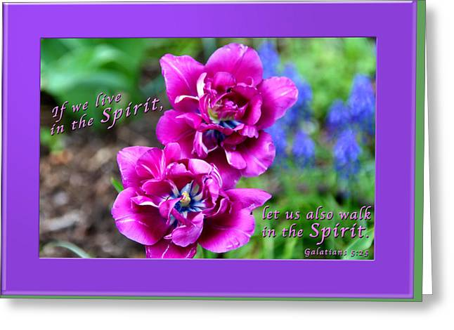 In The Spirit2 Greeting Card by Terry Wallace
