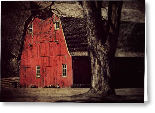 Country Cottage Digital Art Greeting Cards - In the spotlight Greeting Card by Julie Hamilton