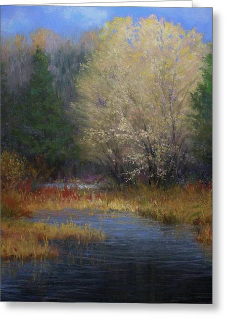 Fall Grass Pastels Greeting Cards - In the Spotlight Greeting Card by Paula Ann Ford