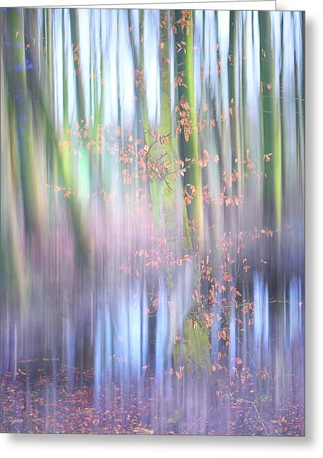 Reflection Of Trees In The Forest Greeting Cards - In the Spring Woods. Impressionism Greeting Card by Jenny Rainbow