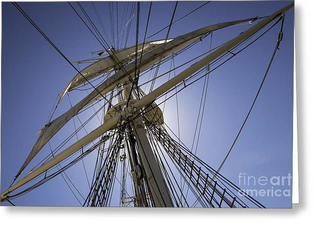 Tall Ships Greeting Cards - In The Vertical Greeting Card by Joe Geraci