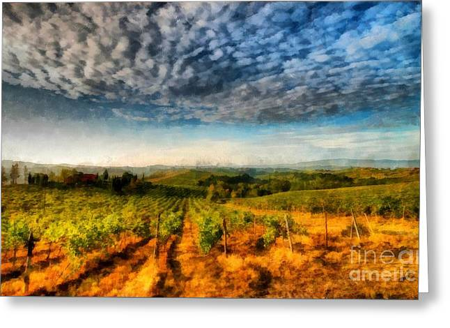 In The Vineyard Winery Landscape Greeting Card by Edward Fielding