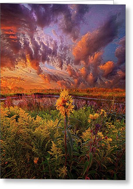 In The Warmth Of Nature's Hand Greeting Card by Phil Koch