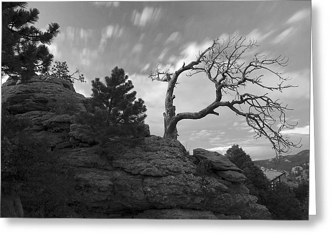 Landscape Pictures Greeting Cards - In Time There Is Motion Black and White  Greeting Card by James Steele