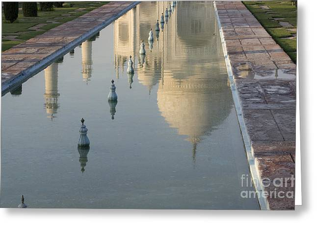 Reflection In Water Greeting Cards - In Water Greeting Card by Elena Perelman