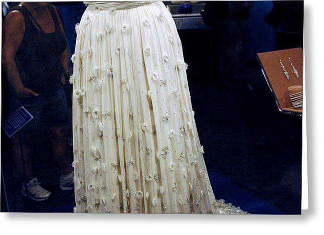 Inaugural gown on display Greeting Card by LeeAnn McLaneGoetz McLaneGoetzStudioLLCcom
