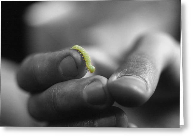 Fingertips Greeting Cards - Inchworm Greeting Card by Frank Mari