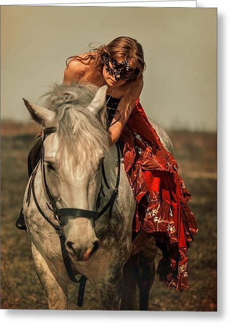 Beautiful Horse Photography Greeting Cards - Incognito Greeting Card by Jenny Rainbow