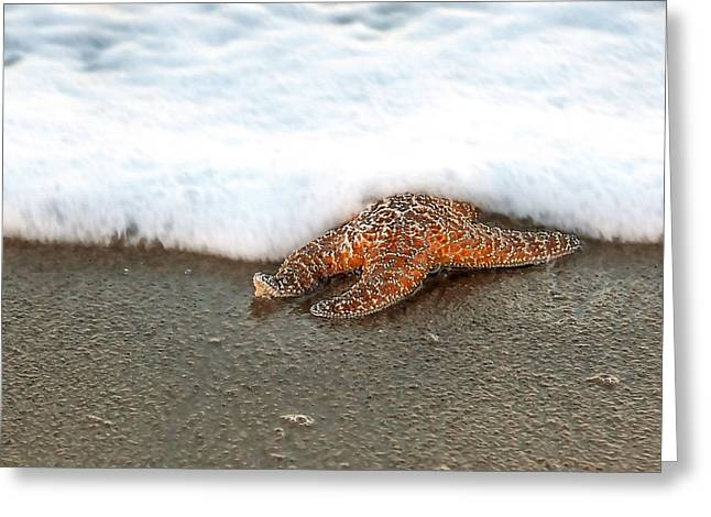 Incoming Tide Greeting Cards - Incoming Tide Greeting Card by Art Block Collections