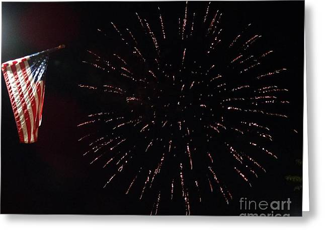 Independence Day Greeting Card by Gina Sullivan
