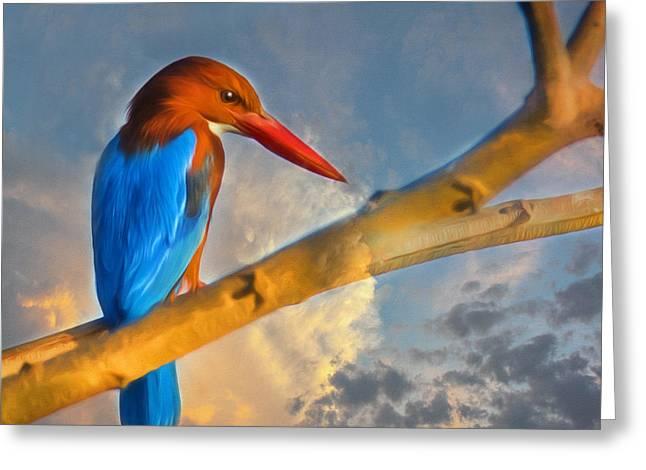 Indian Bird From Mysore  Greeting Card by Georgiana Romanovna