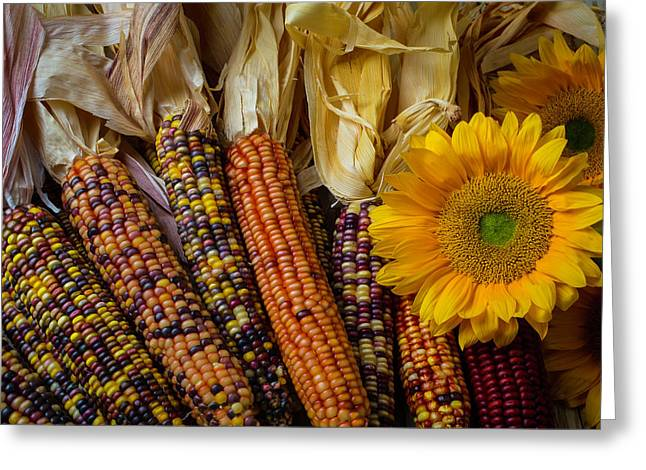 Indian Corn And Sunflowers Greeting Card by Garry Gay