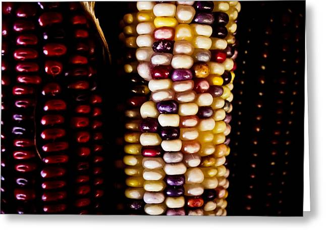 Corn Kernel Greeting Cards - Indian Corn Greeting Card by Colleen Kammerer