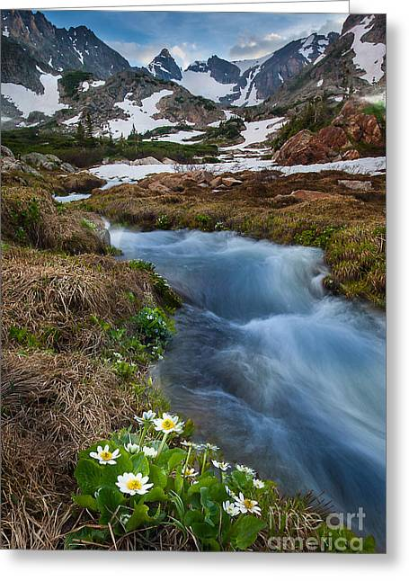 Scenic Greeting Cards - Indian Peaks Wilderness Greeting Card by Steven Reed