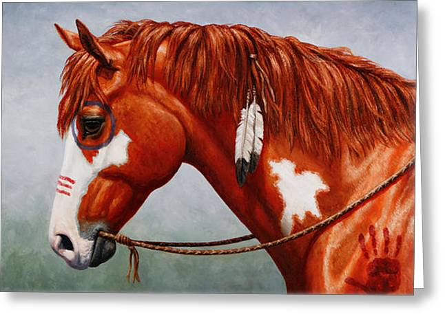 Chestnut Horse Greeting Cards - Indian Pony War Horse iPhone Case Greeting Card by Crista Forest