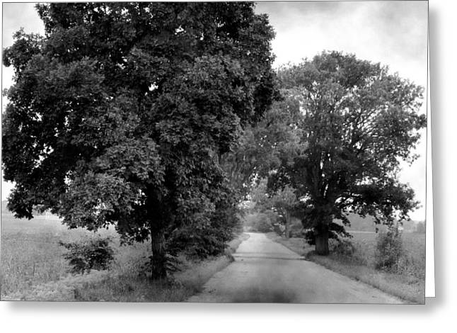 Indiana Landscapes Photographs Greeting Cards - Indiana Road and Trees Greeting Card by Michael L Kimble